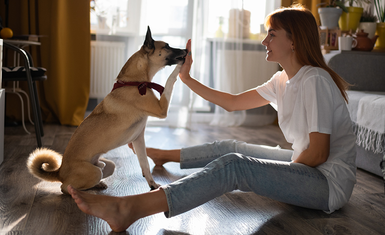 A girl and her dog are high-fiving while sitting on the floor.